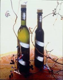 Stiglers Balsamico - Balsam für die Seele